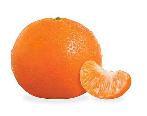 clementine_v2